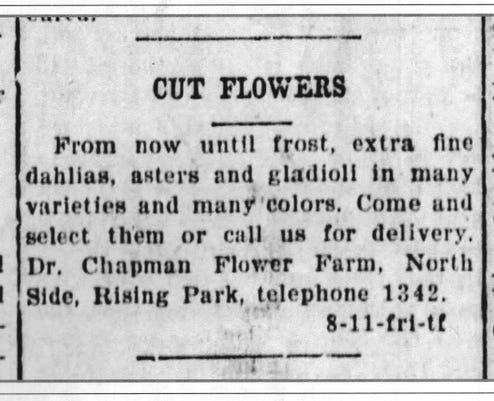 Chapman Flower Ad