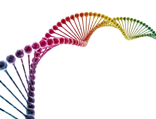 A vast amount of information about who we are and what keeps us healthy is stored in our DNA.