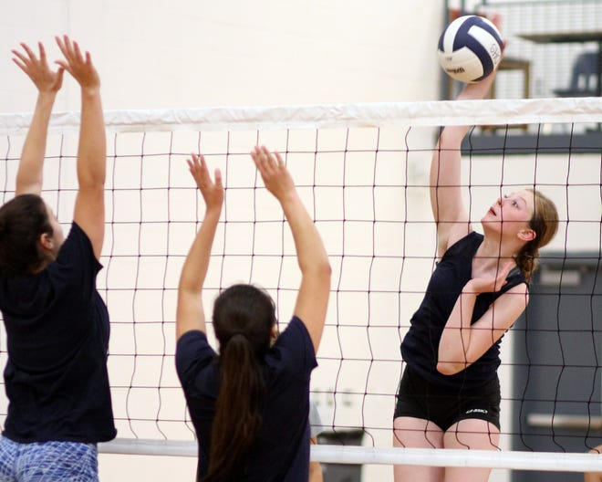 The Deming High Lady 'Cats plan to stand tall at the net, led by a trio of senior front liners. The 'Cats will open the 2018 season away on Aug. 21 at Chaparral High School.