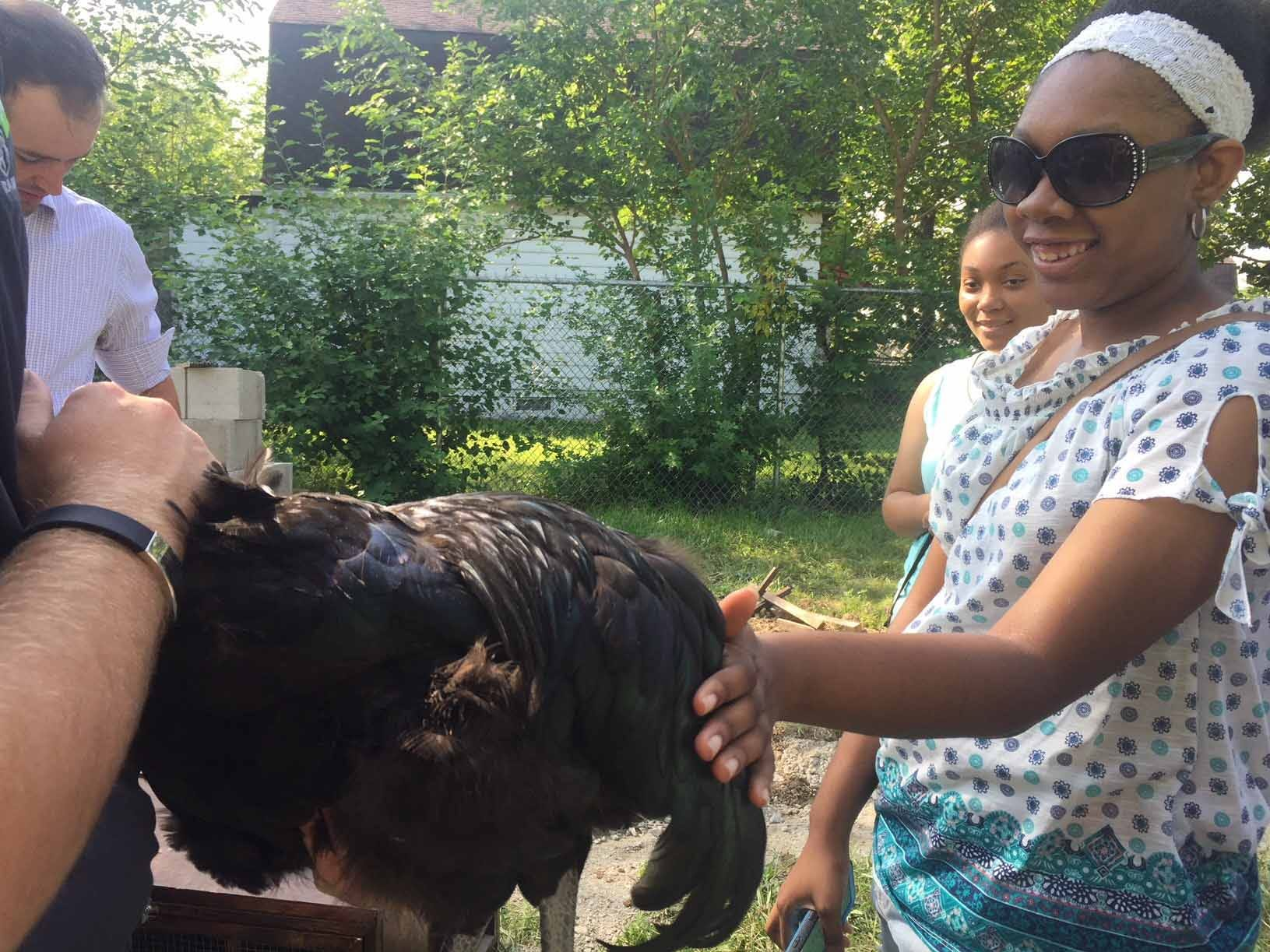 Michigan State Fair youth council work with Detroit youth to help raise chickens at Oakland AvenueUrban Farm in Detroit.