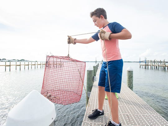 Ben Kalb, 12, lowers the trap with the three-clawed blue crab that he recently caught back into the water behind his home on Little Sabine Bay in Pensacola.   Kalb isn't sure what he is going to do with the crab, but it did get spared from the pot used to cook the other caught  for now.  Thursday, August 9, 2018.