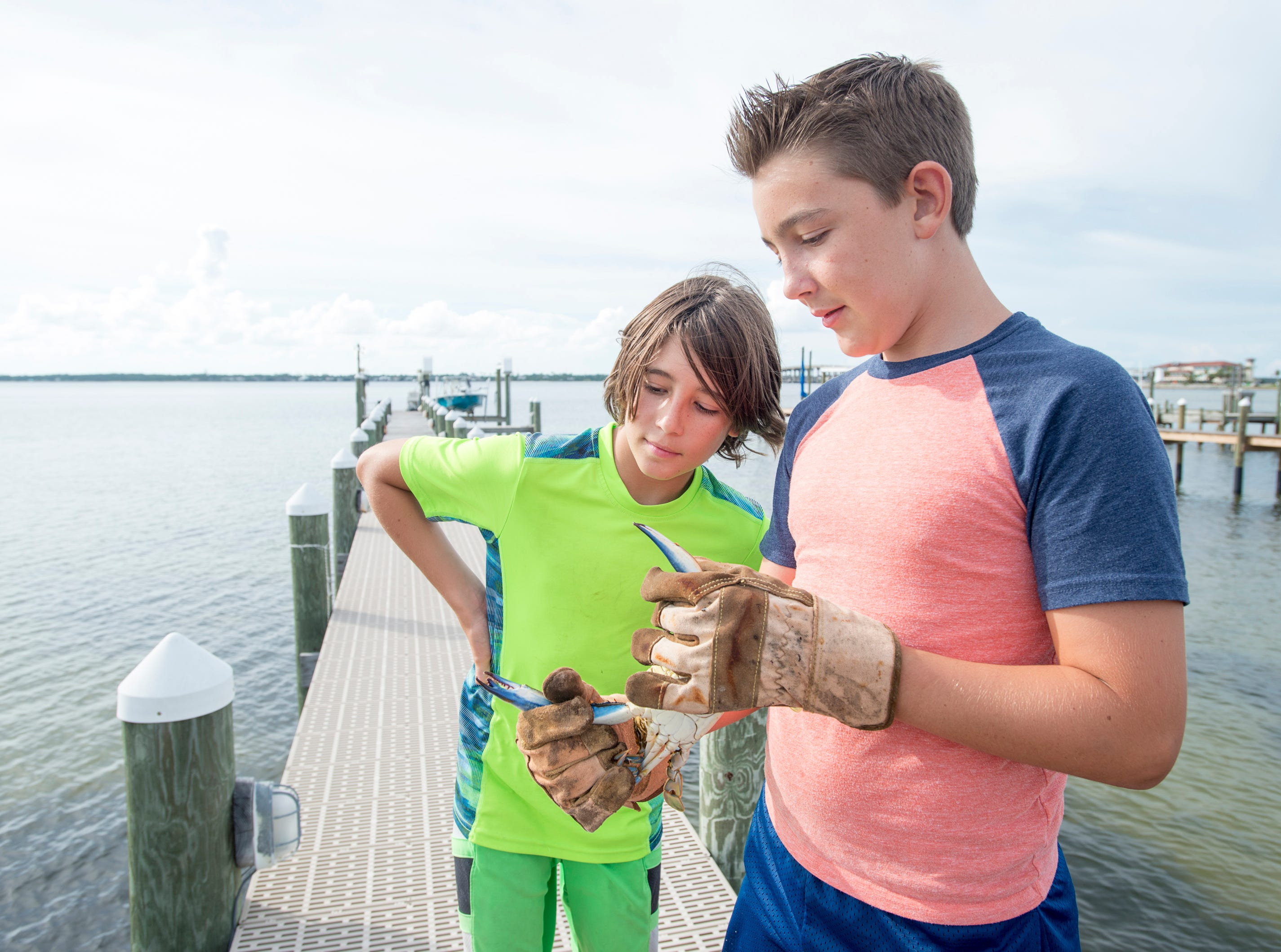 Ryan Kalb, 10, left, gets a closer look at the three-clawed blue crab that his brother Ben Kalb, 12, recently caught behind their home on Little Sabine Bay in Pensacola.   Thursday, August 9, 2018.