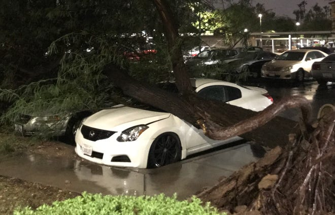 A tree fell onto a car in a parking lot at an apartment complex near University and McClintock drives in Tempe during a monsoon storm on Aug. 8, 2018.