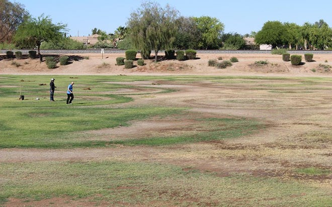 A homeowners association in Chandler poured a lot of water on the green spaces it manages and still had brown and bare areas.