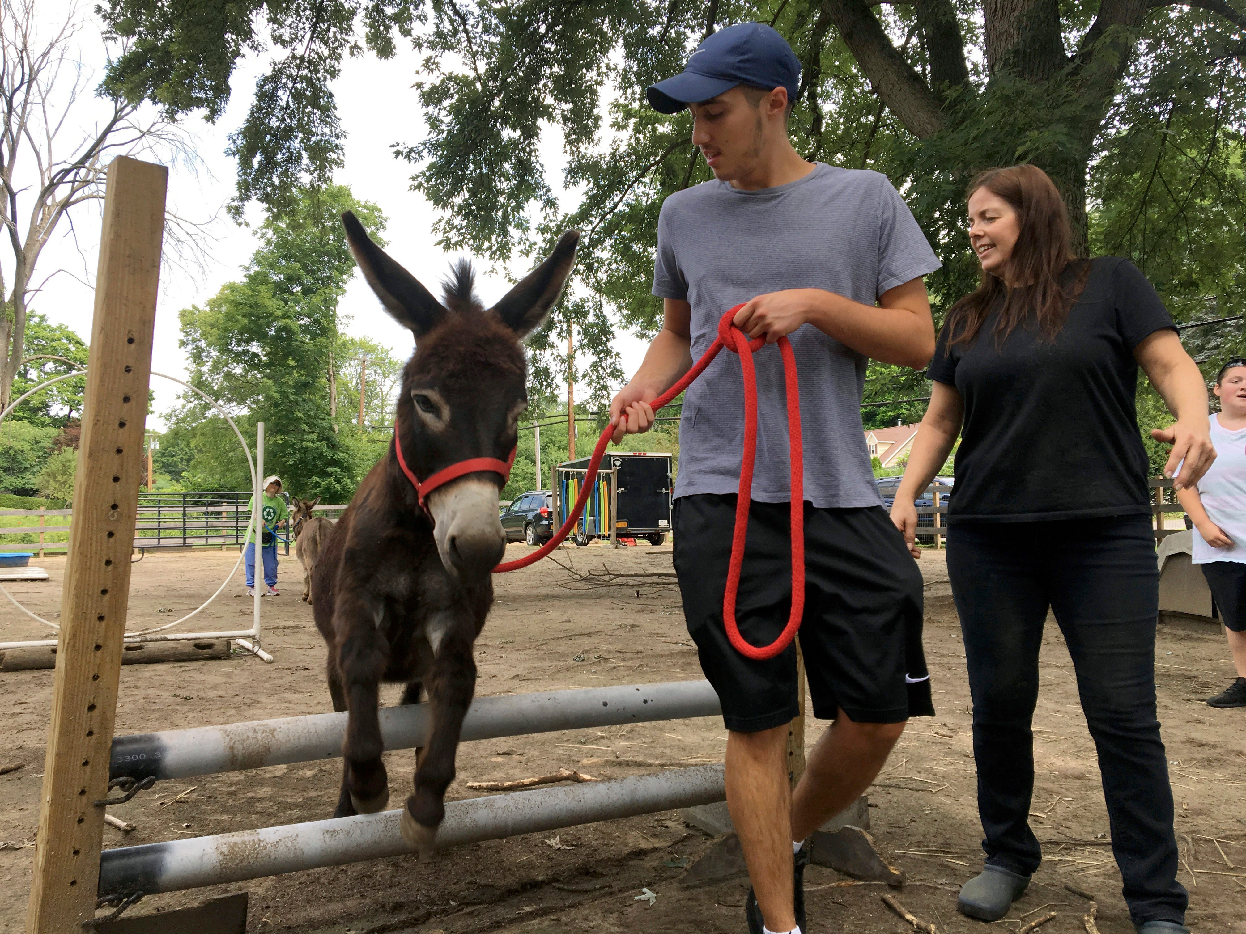 In this July 30 photo Donkey Park visitor Evan Oster leads a miniature donkey through an obstacle course as volunteer Patti Lundgren looks on, at Donkey Park in Ulster Park.