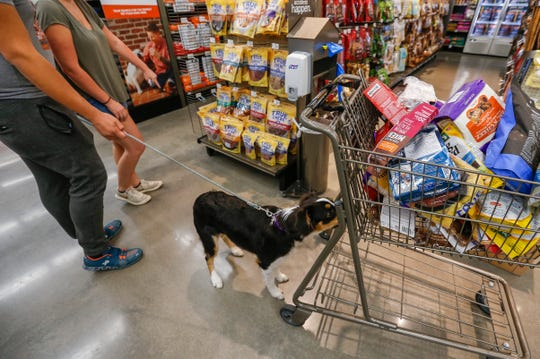 Melody, an Australian Shepherd, sniffs a shopping cart at PetCo as Luis Peralta and Destinee Cordray look for treats on Thursday, Aug. 9, 2018.