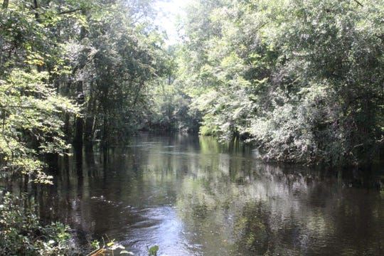 The St. Marks River in Natural Bridge Historic Battlefield State Park. An area called Horn Springs, close to 2,000 acres of land, have been added to the north nearly completing a wild corridor from Tallahassee to the coast.