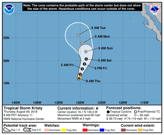 Tropical Storm Kristy 11 a.m. Aug. 9, 2018.