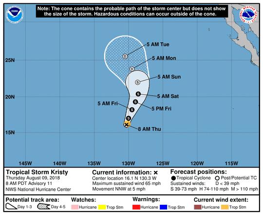 Tropical Storm Kristy 11 a.m. Aug. 9, 2018.