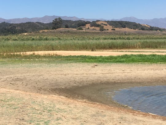 Shorelines at the drought-stressed Lake Casitas have moved, exposing old roads and building foundations, in recent years.