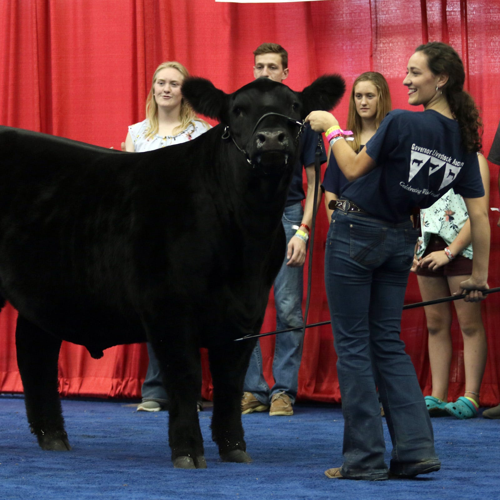 Governor's Blue Ribbon Livestock auction brings in $316,800