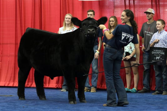 Wsf 0810 Blue Ribbon 9