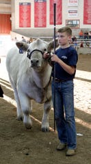 Chance Austin, 12, of Milton, leads his Champion Breed Steer Charolais in for the Governor's Blue Ribbon Livestock Auction at the Wisconsin State Fair on Aug. 8.