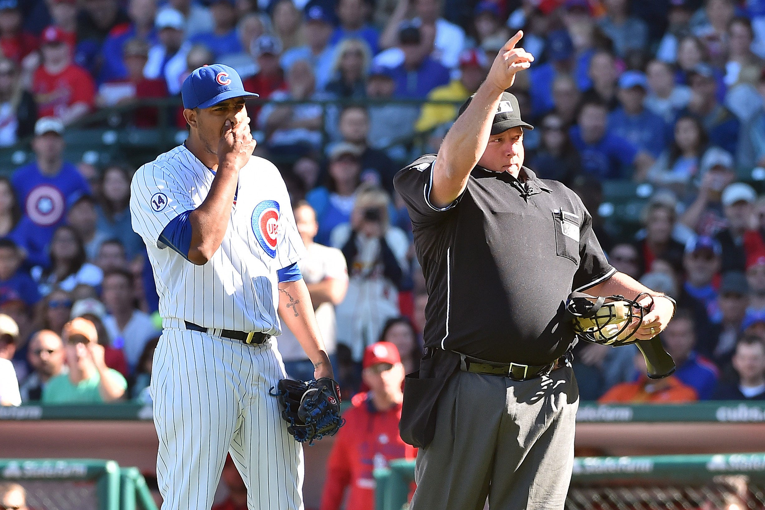 Umpire in Yankees-White Sox game has live bug pulled out of his ear during ninth inning
