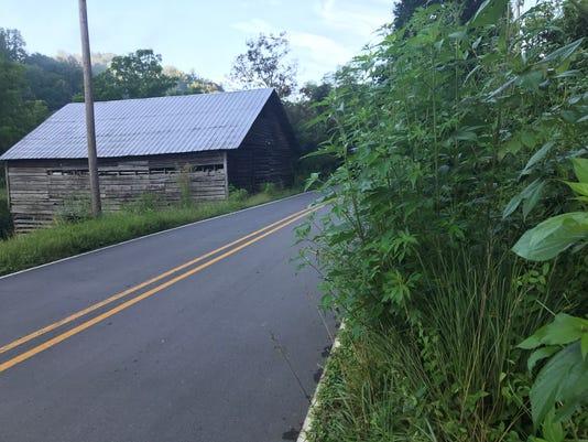 Roadsidegrowth