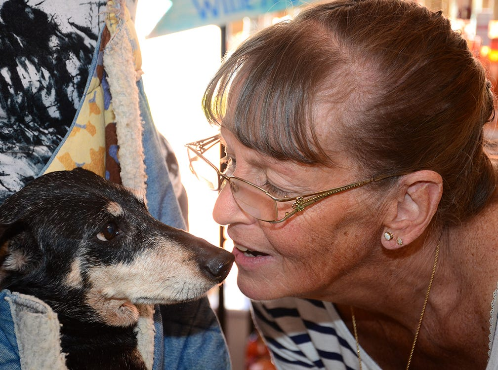 Skippy, a former Florida Dachshund Rescue, loves on Kelly Wilson Saturday during the Paws for a Sip benefit hosted by Tails at the Barkery and held at The Wine Lady in Cocoa Village.