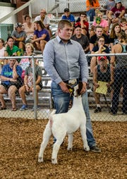 Portraits and highlights from the 2018 Jr. Fair Meat Breeding and Market Goat judging.