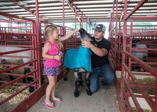Morgan Wurzbach, 5, pets Shaun the sheep before Aaron Yoakum puts him back in his pin Thursday at the Ross County Fair.