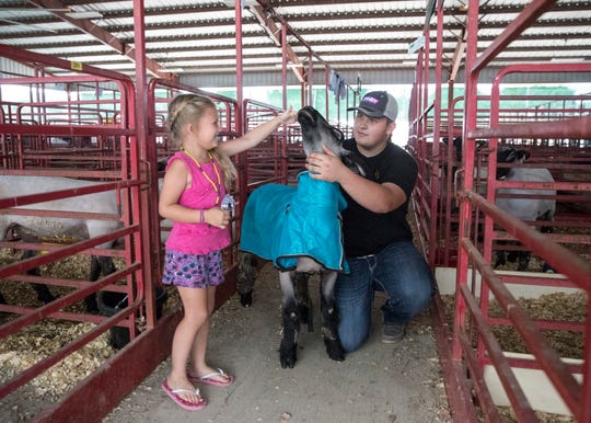 Morgan Wurzbach, 5, pets Shaun the sheep before Aaron Yoakum puts him back in his pin Thursday at the Ross County Fair.