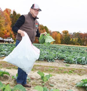 The Department of Agriculture is accepting applications for the Gleaning Support Program Grant.
