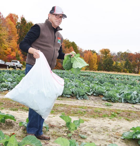 Grants available for gleaning organizations PHOTO CAPTION