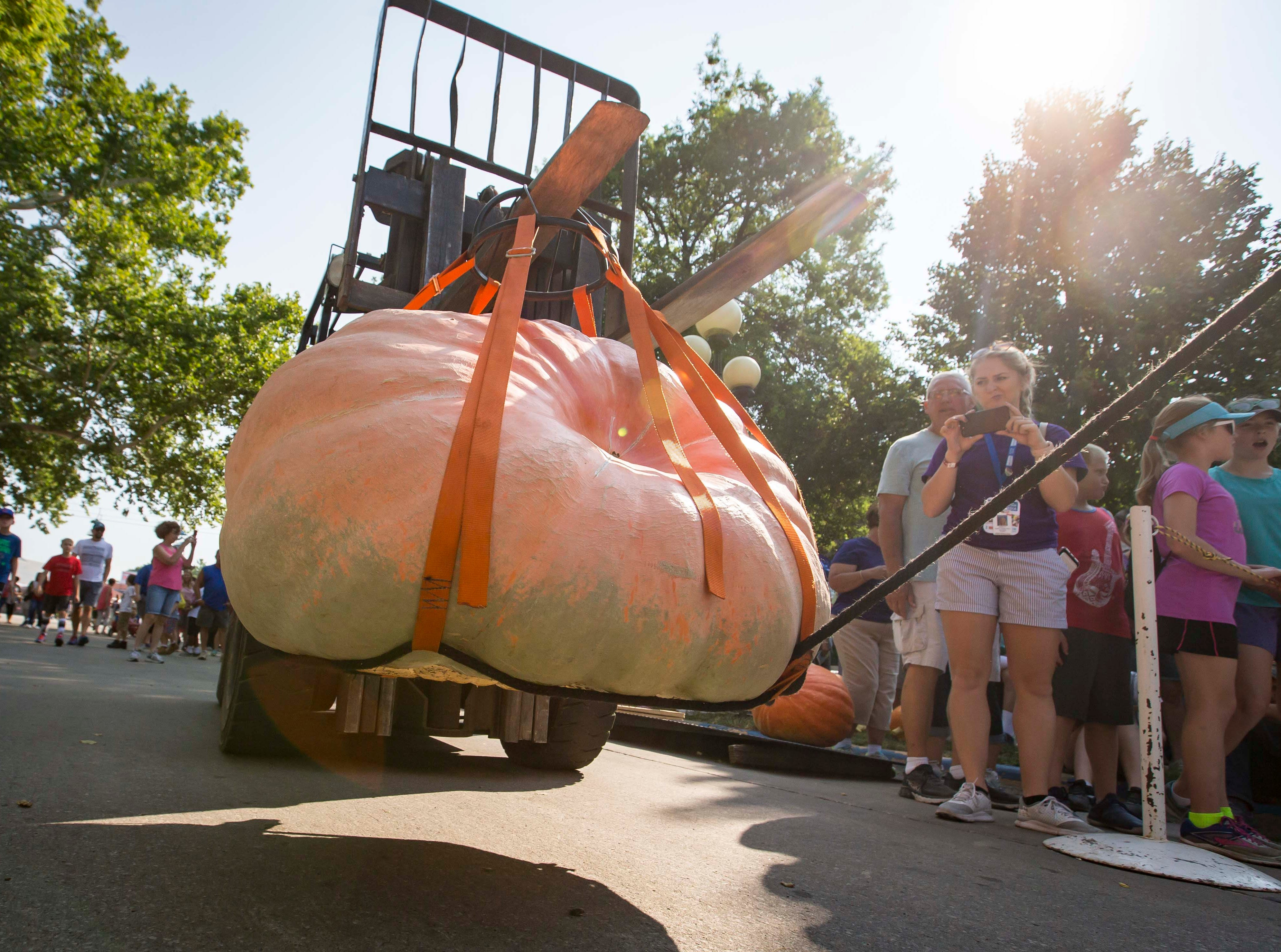 Jackie Davis of Bloomfield has her pumpkin weighed during the Big Pumpkin contest at the Iowa State Fair Friday, Aug. 10, 2018, in Des Moines, Iowa.