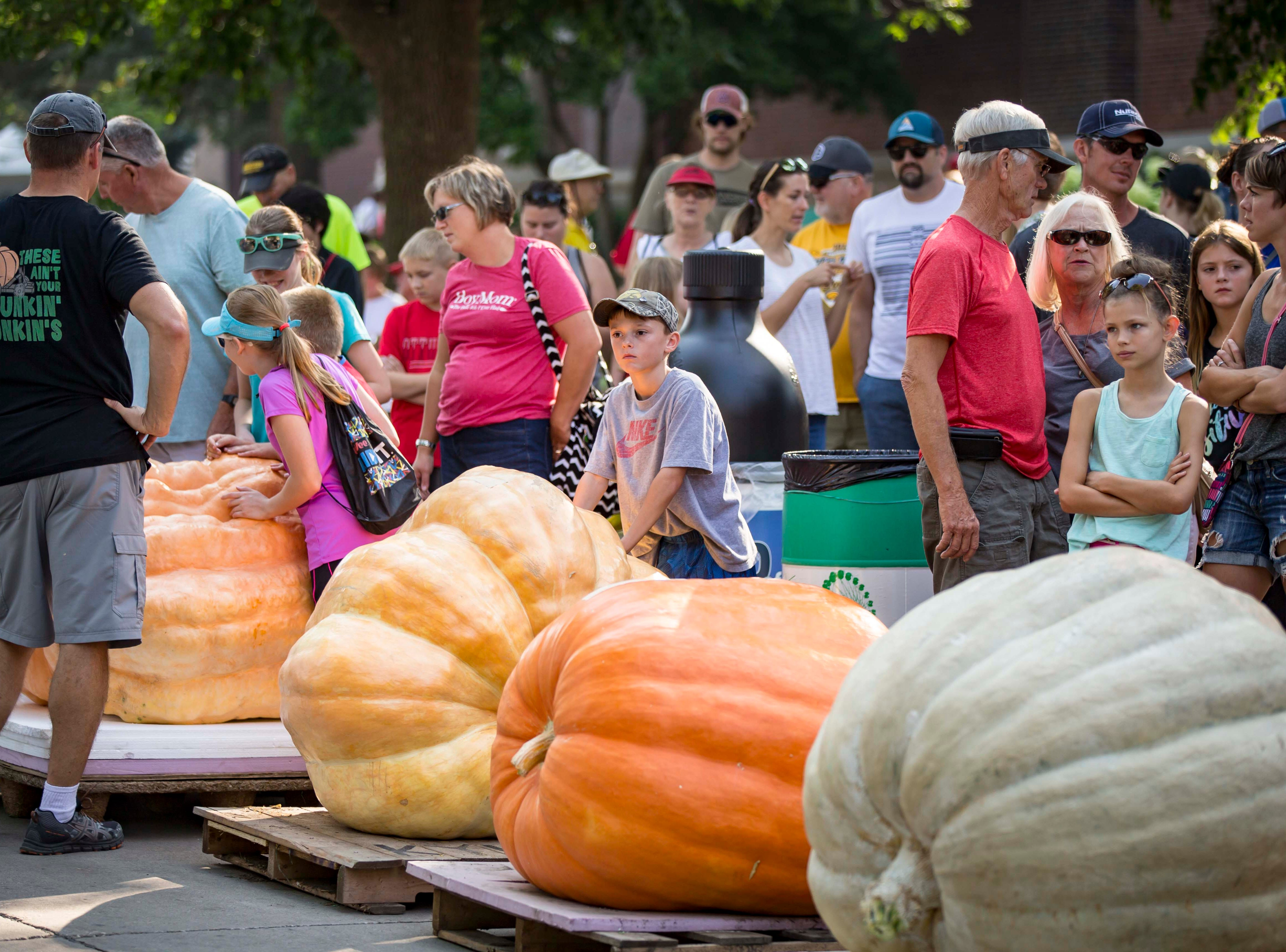 Contestants and their families wait for the scales during the Big Pumpkin Weigh-In at the Iowa State Fair Friday, Aug. 10, 2018, in Des Moines, Iowa.