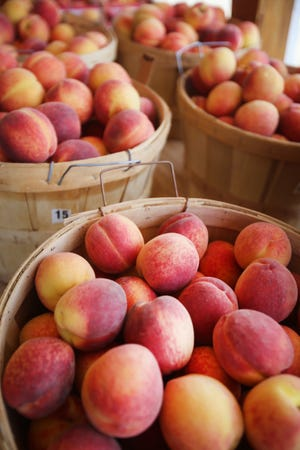Pick-your-own peaches are $1.49 a pound at Erie Orchards and Cider Mill.
