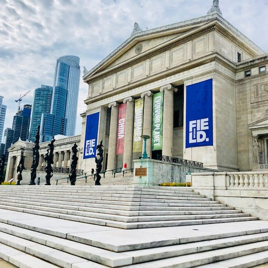 Chicago's Field Museum is a popular stop for dinosaur fans.