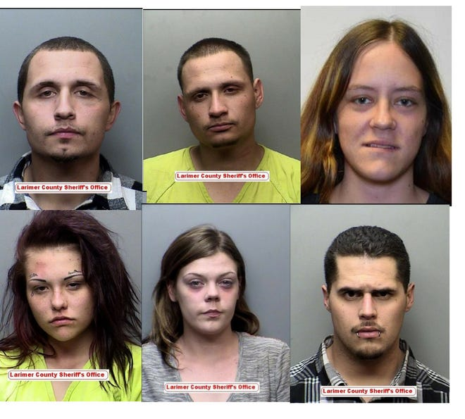 Clockwise from top left: Mark McQuilliams, Raymond Valdivia, Brittany Orton, Michael Carrillo, Savannah James and Alyssa Johnson