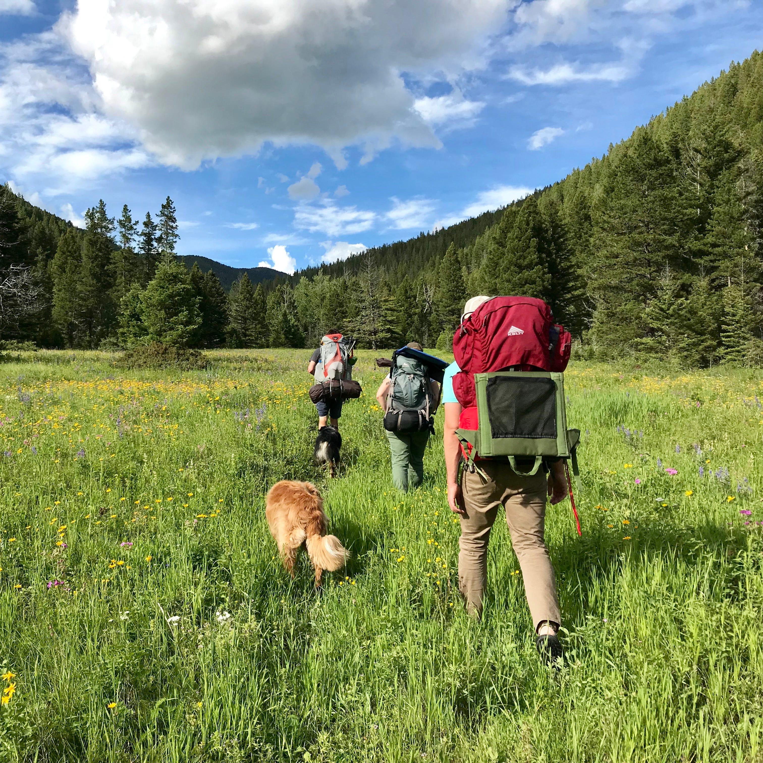 Hiking near Neihart