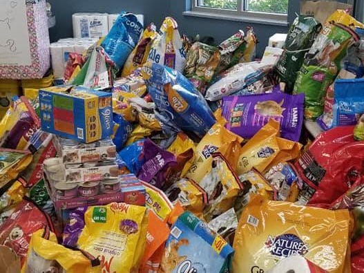 Donations piled up inside the lobby of the Hendricks County Animal Shelter Thursday after a plea for help.