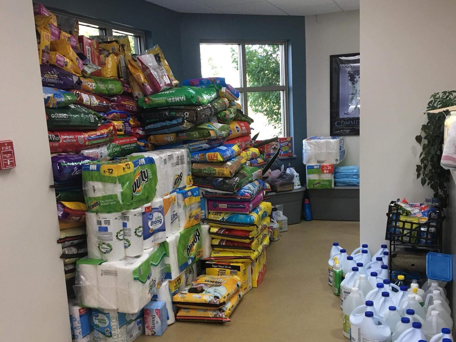 Donations are stacked neatly after people responded in droves to the The lobby of the Hendricks County Animal Shelter's pleas for help.
