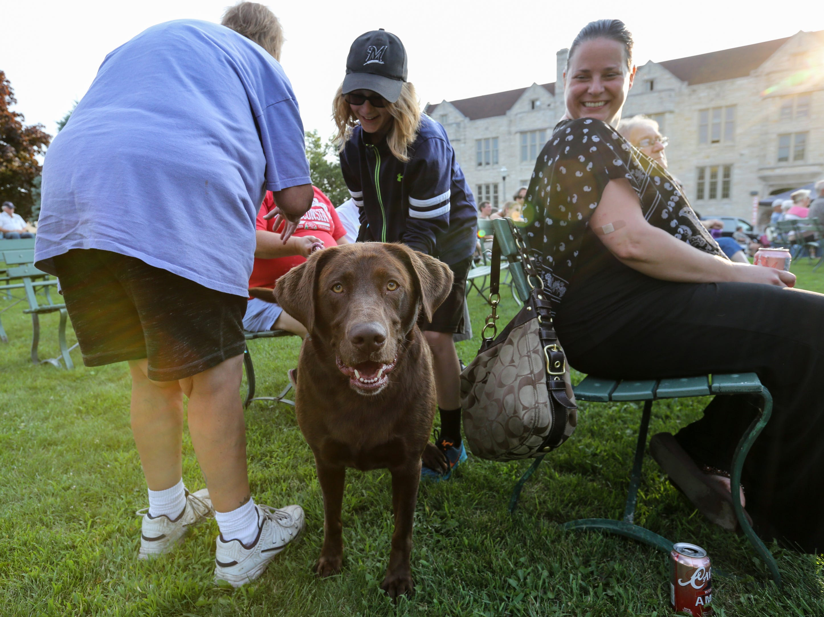 Luanne Feron's dog Winnie approaches the camera as the Two Rivers Community Band plays their final concert of the season at Central Park Thursday, August 9, 2018, in Two Rivers, Wis. Josh Clark/USA TODAY NETWORK-Wisconsin