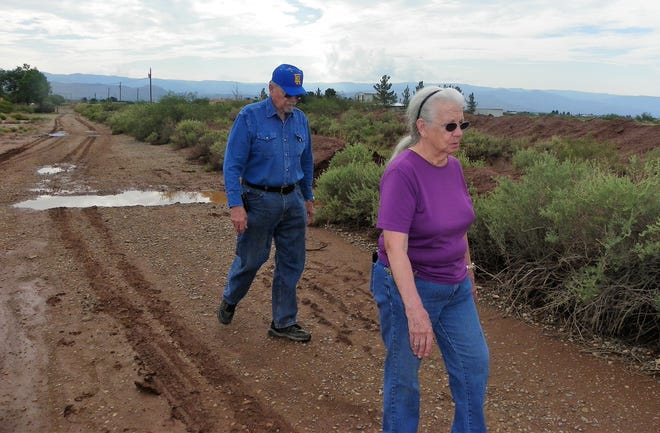 Jack Rees, left, and Gwinna Rees, right, survey Gardner Road after a bout of monsoon rain.