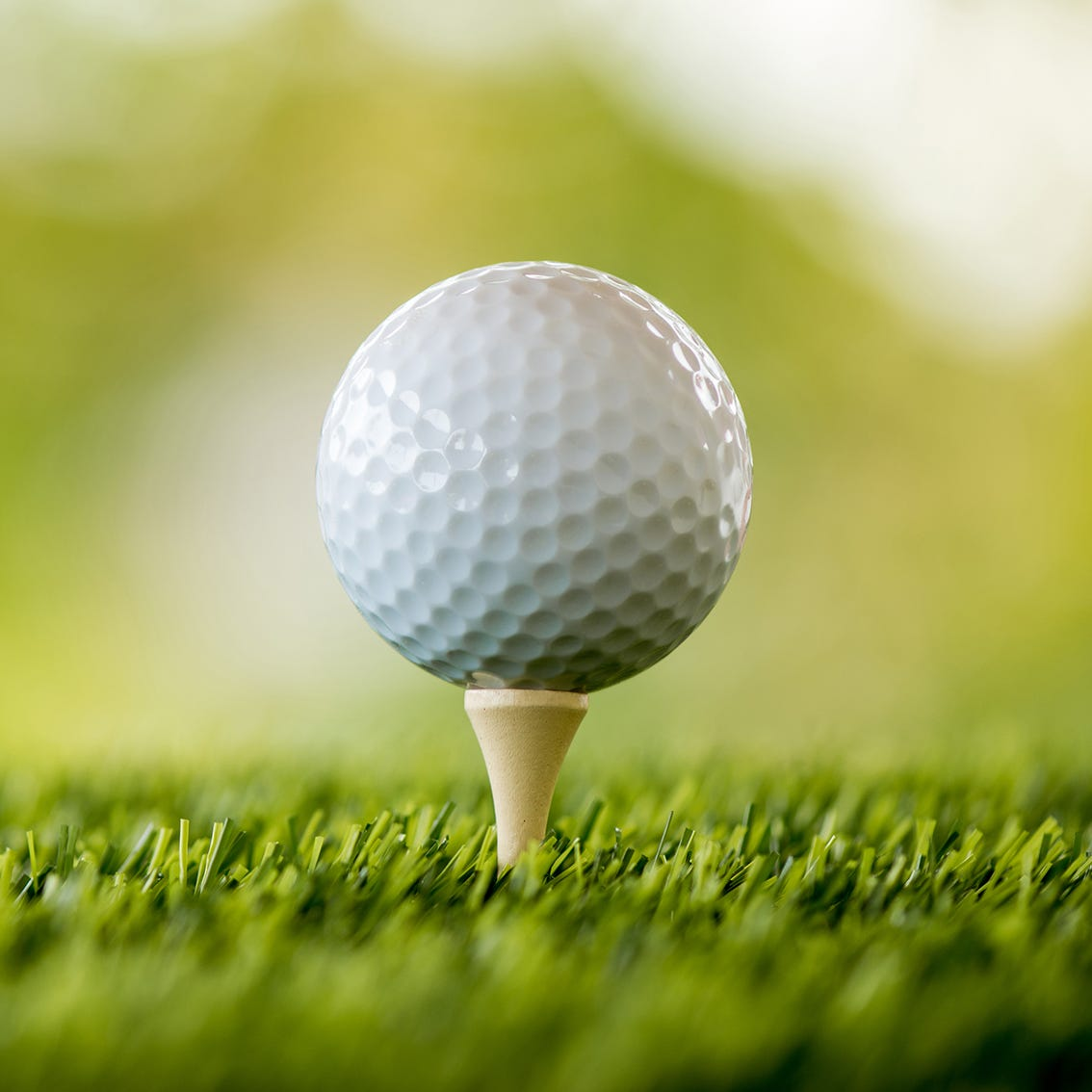 Golf: Wausau girls place fifth in Stevens Point Invitational
