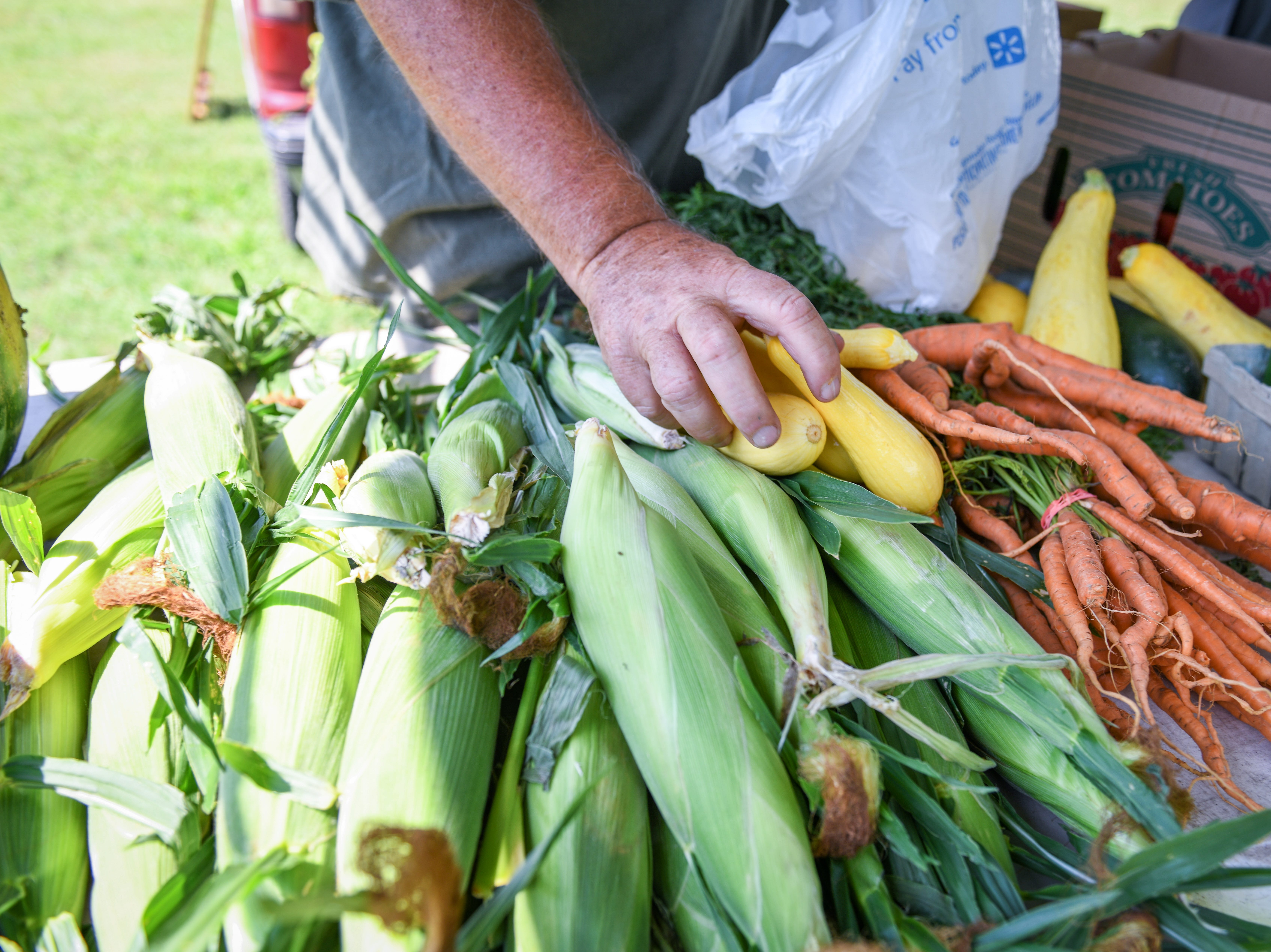 Ken Robinson picks out squash for a customer at the Princess Anne farmers market on August 9. He grows most of the produce he sells on a family farm in Mardela.