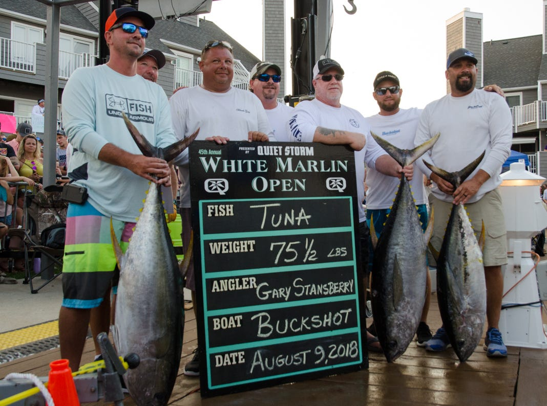 The crew of the Buckshot are pictured with their three tuna on Thursday. On the far left, the largest of the three weighed 75.5 pounds and took over first place in the tuna category. Gary Stansbury, third from right, was the angler.