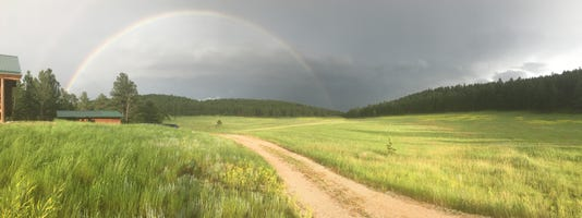 Pollmann Rainbow