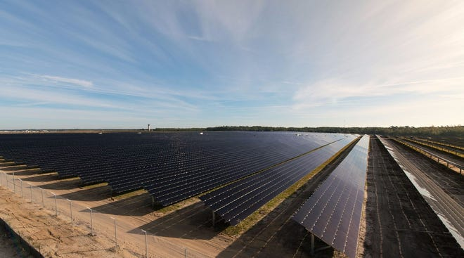 A team of Florida State University researchers is pioneering innovative ways for solar cells to absorb and use infrared light. Shown here is a solar farm operated by the City of Tallahassee.