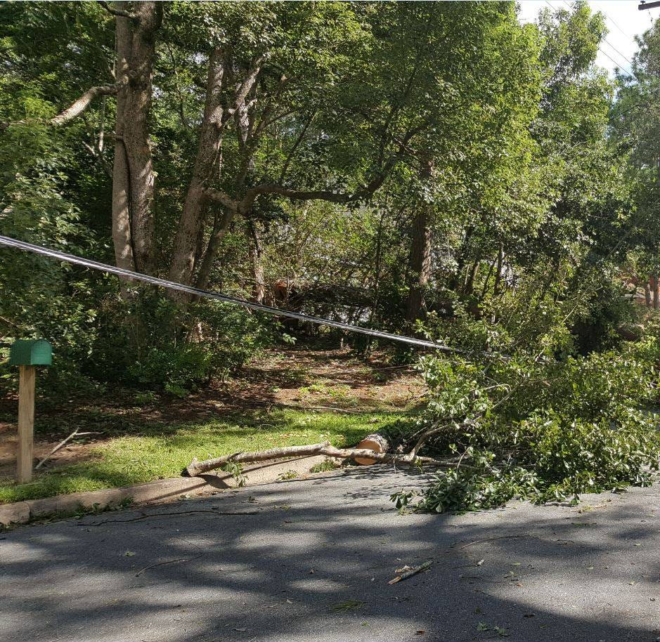 Electrical crews focus on 23 Tallahassee neighborhoods still without power Monday