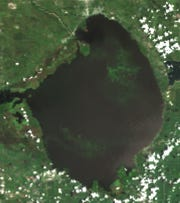 An Aug. 9 satellite image shows algae covering about 45 percent of the open water in Lake Okeechobee.