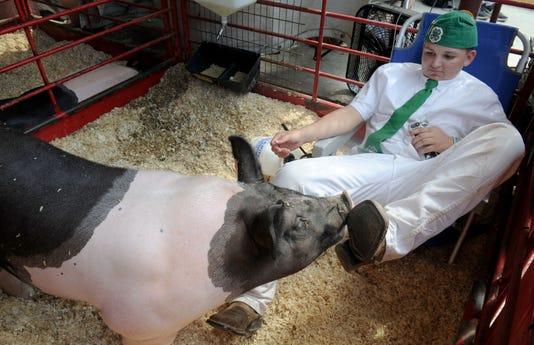 Junior Livestock Auction 6