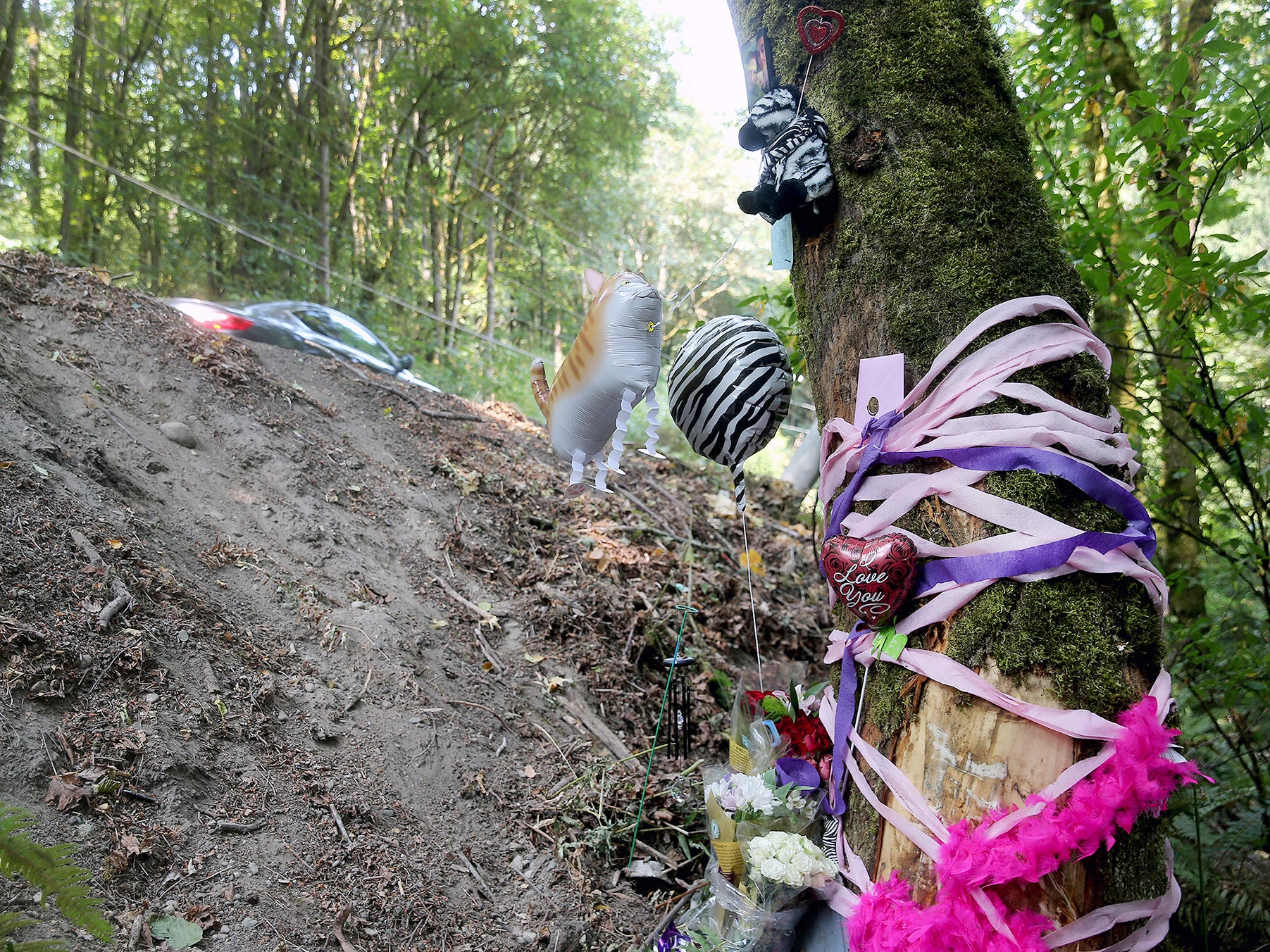 A memorial adorns a tree at the site of a fatal traffic accident on Illahee Rd.