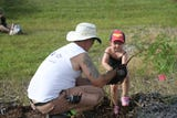 About 40 Future Forestry Foundation volunteers planted more than 450 trees along Veteran's Parkway in Cape Coral on Saturday.