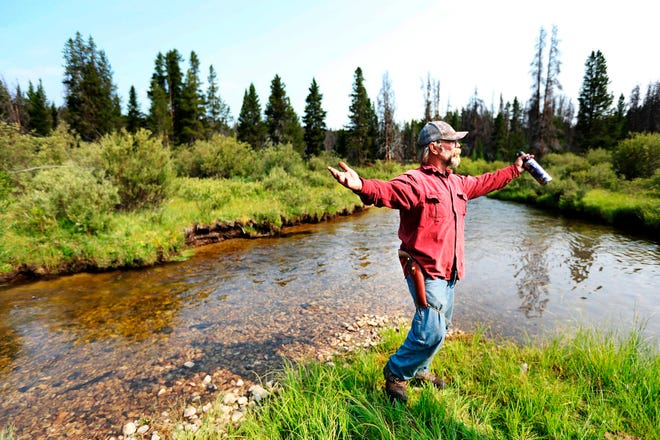 Range rider Chet Robertson stands on an island in the middle of Miner Creek in a remote corner of public forest west of the Big Hole River, spreading his arms wide as he describes the 200-square-mile area he covers for the Big Hole Watershed Commission. (Meagan Thompson /The Montana Standard via AP)