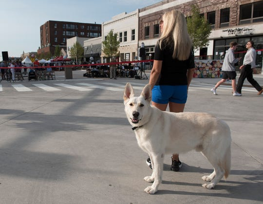 Lynn Duerr and Harley wait for the ceremony to begin. He's a familiar sight in downtown, because Harley and his humans, Lynn Duerr and Tim Duerr, walk the streets twice a day.