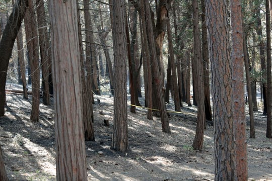 Signs of the recent Cranston fire seen in Idyllwild on Saturday, August 11, 2018.