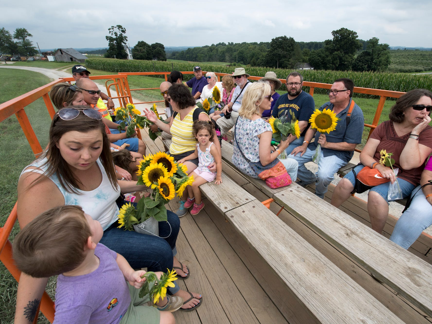 The wagon ride back to the car during the 2nd Annual Sunflower Festival at Maple Lawn Farms near New Park.