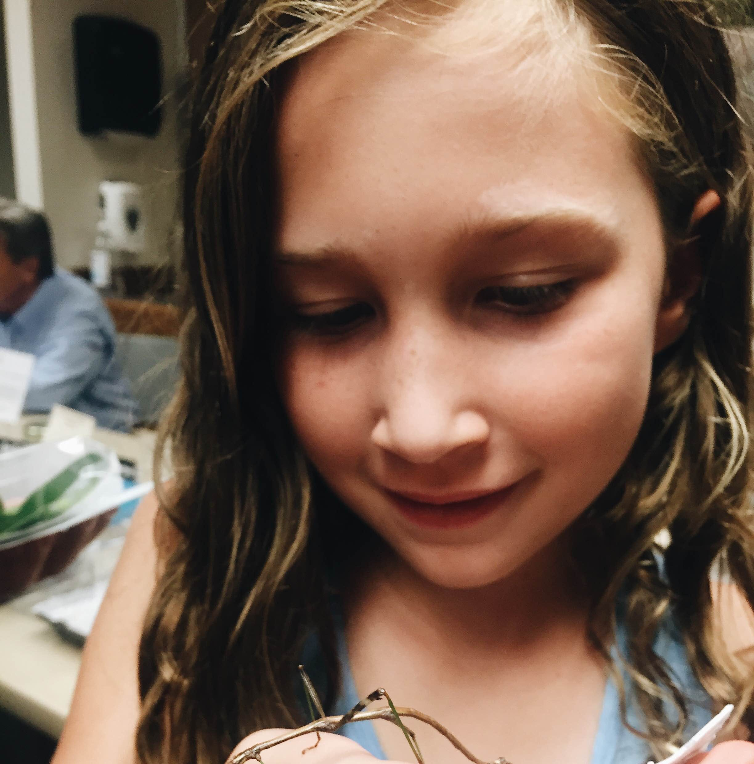 Insect-O-Rama brings out the 'eew' and the 'wow'
